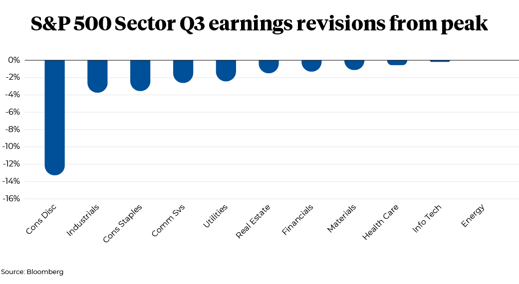 S&P 500 Sector Q3 earnings revisions from peak
